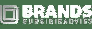 Brands Subsidieadvies